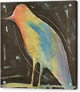 Bird In Gilded Frame Sans Frame Acrylic Print