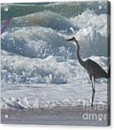 Bird In Surf Acrylic Print