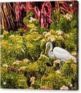 Bird In The Blooms Acrylic Print