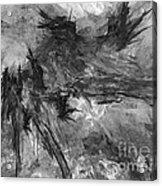 Bird - Marucii Acrylic Print