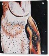 Bird N.7 Acrylic Print