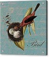 Bird Nest - 02v02t01 Acrylic Print