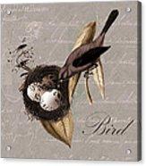 Bird Nest - 02v23c2b Acrylic Print