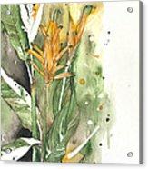 Bird Of Paradise 08 Elena Yakubovich  Acrylic Print by Elena Yakubovich