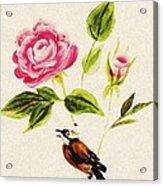 Bird On A Flower Acrylic Print