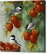 Bird Painting - Apple Harvest Chickadees Acrylic Print