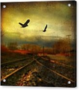Country Bird Rail Acrylic Print