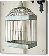 Birdcage Acrylic Print