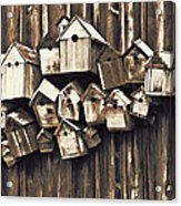 Birdhouse Condominium Acrylic Print