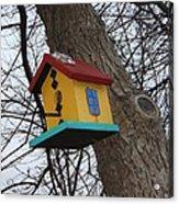 Birdhouse Of Color Acrylic Print by Margaret McDermott
