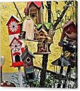 Birdhouse Subdivision Acrylic Print