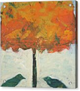 Birds And Maple Acrylic Print