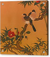 Birds Bamboo And Camellias Acrylic Print
