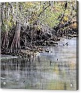 Birds Cold Morning Fishing Acrylic Print