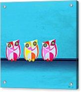 Birds In Blue  Acrylic Print