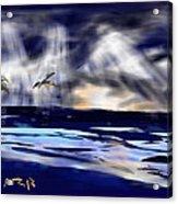 Birds In The Light Acrylic Print