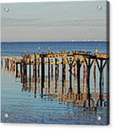 Birds On Old Dock On The Bay Acrylic Print