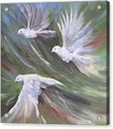 Birds Three Acrylic Print by Paula Marsh