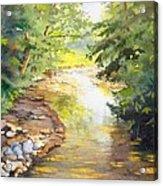 Bird's Trail Creek Acrylic Print