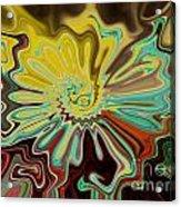 Birth Of A Flower Acrylic Print by Lorraine Heath