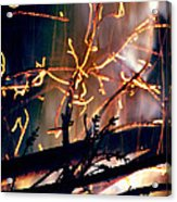 Birthed From Fire Acrylic Print by Rory Sagner