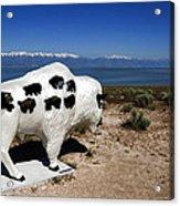 Bison Sculpture Great Salt Lake Utah Acrylic Print