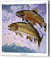 Bitterroot Ephemera Acrylic Print