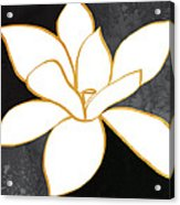 Black And Gold Magnolia- Floral Art Acrylic Print