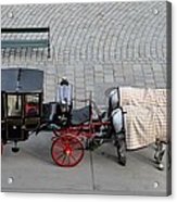Black And Red Horse Carriage - Vienna Austria  Acrylic Print
