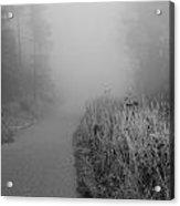 Black And White Foggy Morning Walk Acrylic Print