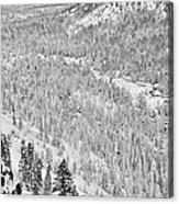 Black And White Lake Tahoe California Covered In Snow During The Winter Acrylic Print