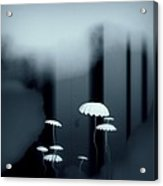 Black And White Mushrooms Acrylic Print by GuoJun Pan