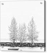 Black And White Square Tree  Acrylic Print
