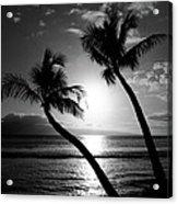 Black And White Tropical Acrylic Print