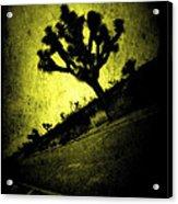 Black And Yellow Joshua Tree Poster Acrylic Print