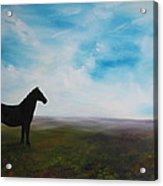 Black As Night In The Light Of Day Acrylic Print