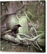 Black Bird In Forgotten Graveyard Acrylic Print