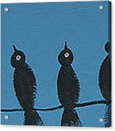 Black Birds On The Line Acrylic Print