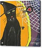 Black Cat In A Hat  Acrylic Print