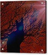 Black Cat In The Moonlight Acrylic Print