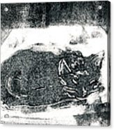 Black Cat Monoprint-2 Acrylic Print