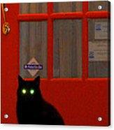Black Cat Red Door Acrylic Print by DerekTXFactor Creative
