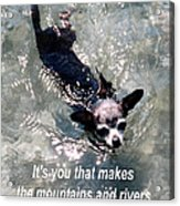 Black Chihuahua Dog Its You That Makes The Mountains And Rivers More Beautiful. Acrylic Print