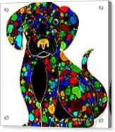 Black Dog 2 Acrylic Print