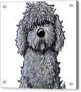 Black Doodle Dog Acrylic Print