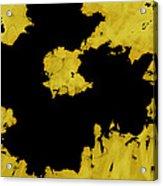 Black Gold - Abstract -art  Acrylic Print
