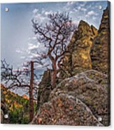 Black Hills Boulders Acrylic Print