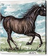 Black Horse Running Acrylic Print