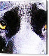 Black Labrador Retriever Dog Art - Lab Eyes Acrylic Print