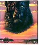 Black Lion Acrylic Print
